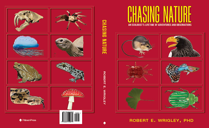 Cover of Chasing Nature: An Ecologist's Lifetime of Adventures and Observations