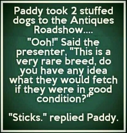Paddy took 2 stuffed dogs to the Antiques Show